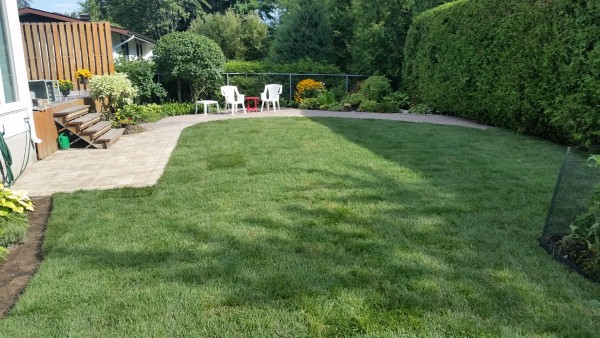 Renovations vs. Removal/Fill In | Interlock Landscape Pool